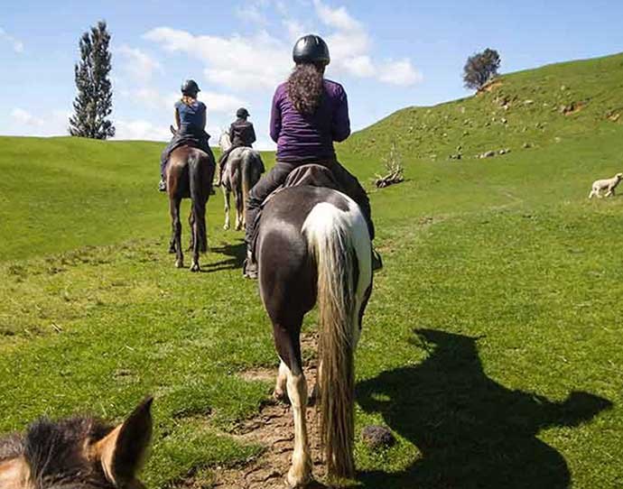 Horseback riding in the summer in Snowmass, Colorado